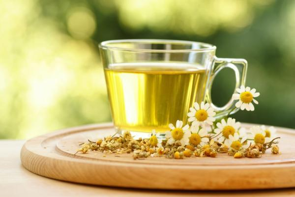 Chamomile Plant, Tea, And Oils Benefits And Uses