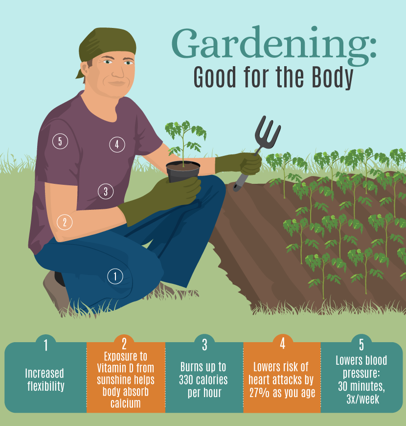 How To Start Your Own Wellness Garden